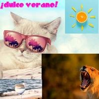 ¡dulce verano! Logotipo template