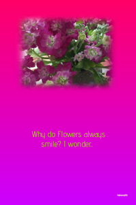 Why do Flowers always Smile?..custom poster