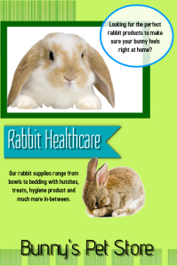 Bunny pet store