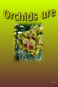 Orchids are Forever-customizable poster