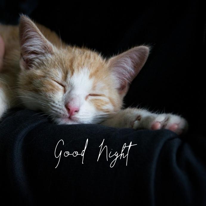 23 Good Night Publicación de Instagram template