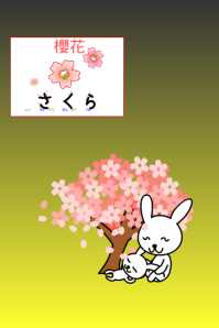 japan cherry blossom view Poster template