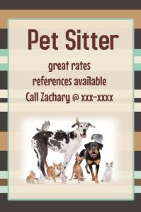 Pet Sitter Masculine Poster Flyer Announcement Invitation