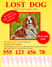 Lost Pet Flyer Template with Tabs