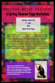 Spring cleanse workshop