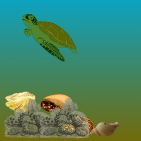 A Green Turtle's Journey Cover Page