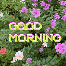 A very good morning