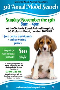 Animal Hospital Poster
