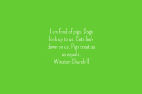 Pigs-Winston Churchill