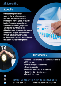 Accountants Services Poster