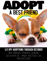 Adopt a Best Friend