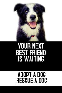 dog walker adopt a pet flyer template