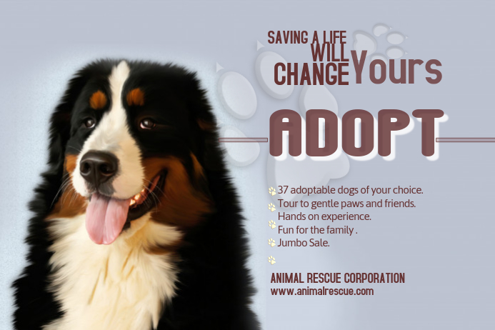 Copy of adopt a pet poster template postermywall for Dog adoption flyer template