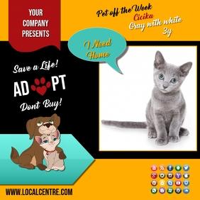 adopt poster insta