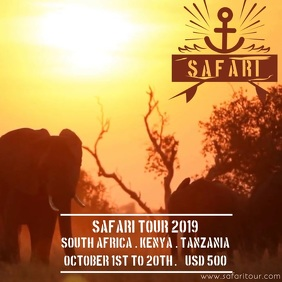 AFRICAN SUMMER SAFARI