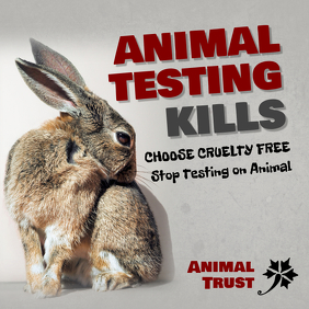 Against Animal Testing Instagram Post Template