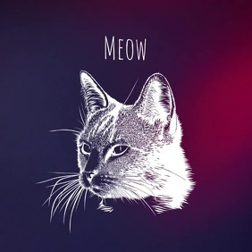 Album art video meow