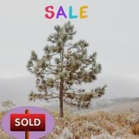 tree and snow ปกอัลบั้ม template