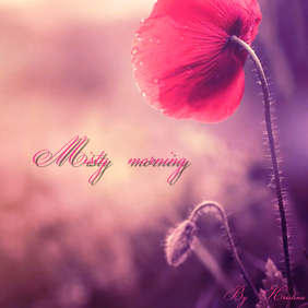 "Album or Book Cover ""Misty morning"" template"