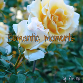 "Album or Book Cover ""Romantic Moments"""