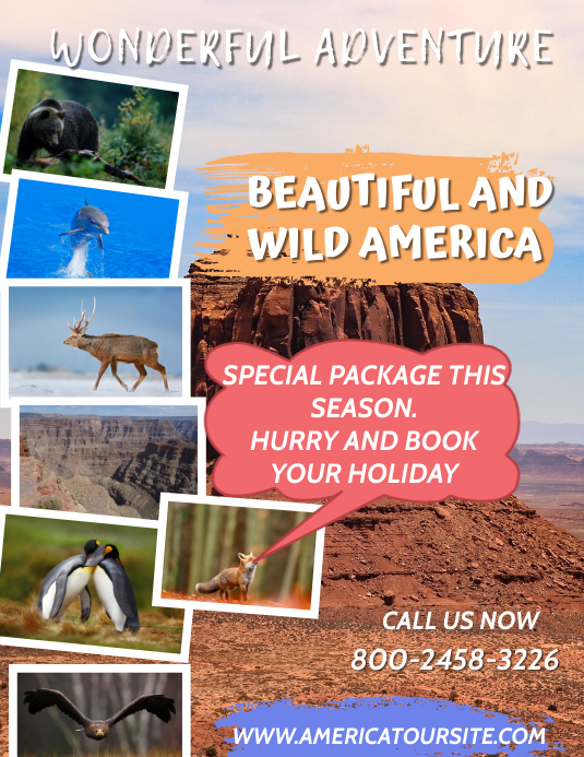American Tour Flyer Template