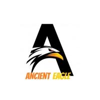 Ancient Eagle Logotipo template