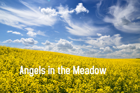 Angels in the Meadow Poster template
