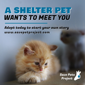 Animal Adoption Awareness Instagram Post Template