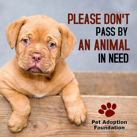 Animal Adoption Campaign Instagram Post Template