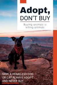 Animal Adoption Campaign Poster Template