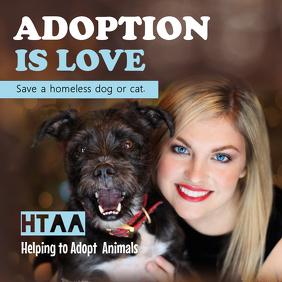 Animal Adoption Center Instagram Post
