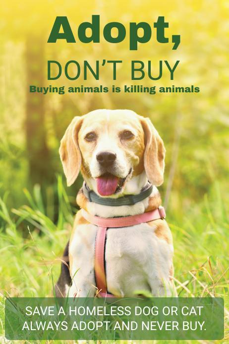 Animal Adoption Center Poster Template