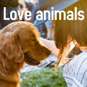 animal love Publicación de Instagram template