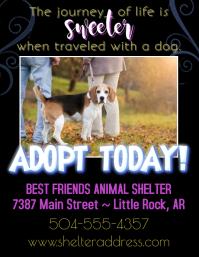 Animal Shelter Flyer