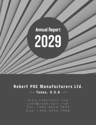Annual Report 2029