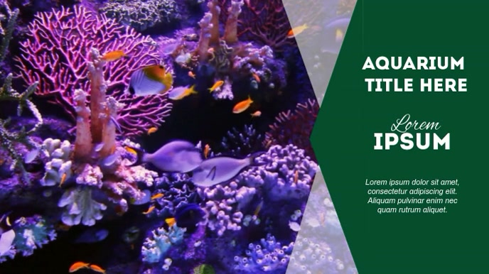 AQUARIUM VIDEO AD Digital na Display (16:9) template