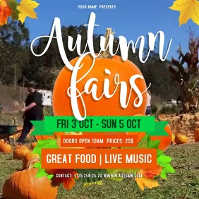 Autumn Fair Instagram Video