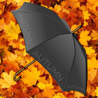 Autumn Leaves & Umbrella Theme Album Cover template