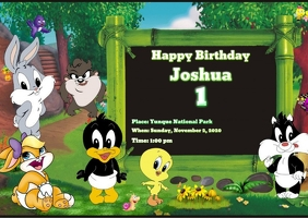 Baby Looney Tunes Birthday Invitations