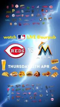 Baseball Game Instagram Post Digitalanzeige (9:16) template