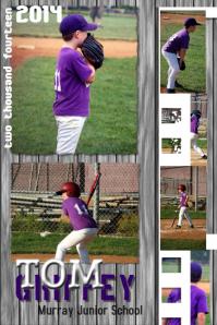 customize 320 baseball poster templates postermywall