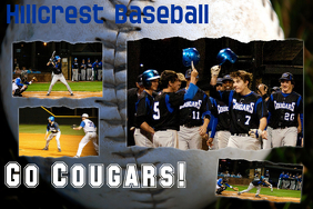 Baseball Poster Idea