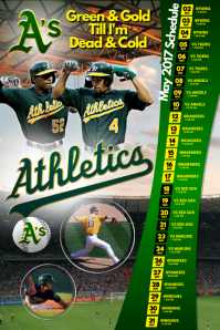 Baseball Team Schedule Poster