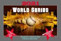 Baseball World Series