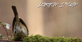 BEAUTIFUL BIRD SOCIAL MEDIA VIDEO BACKGROUND Imagen Compartida en Facebook template