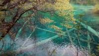 beautiful water YouTube 缩略图 template
