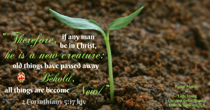 Bible verse flyer
