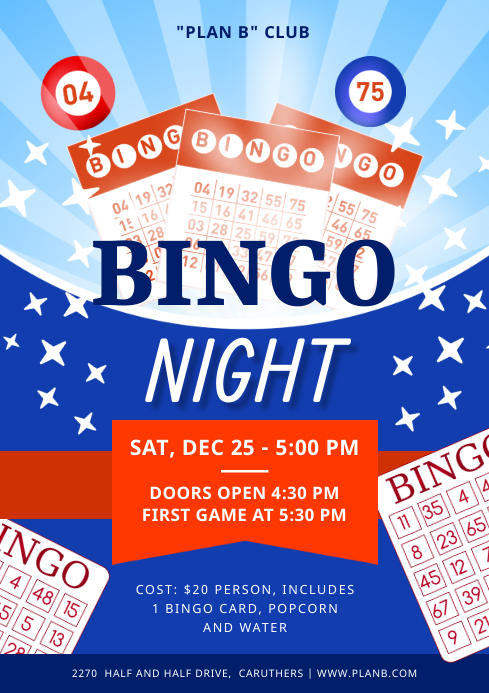 Bingo Night Coins Poster A4 template