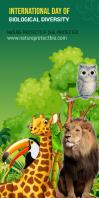 Biodiversity Banner 3X 6 template
