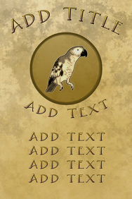 bird parrot pet, old paper and golden theme